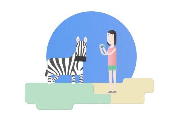 zebra and a girl illustration